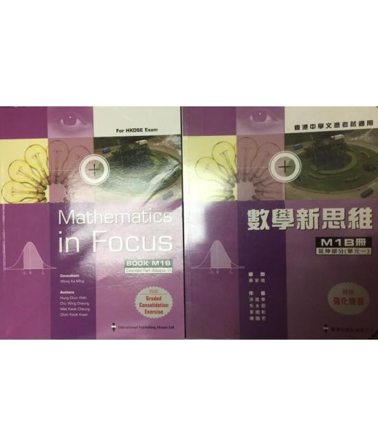 Mathematics in Focus Book M1B